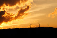 Wind turbines at sunset Stock Photography