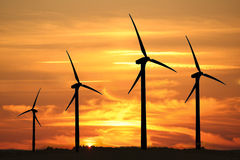 Wind turbines at sunset Royalty Free Stock Photography