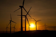 Wind turbines at sunset. A wind turbines farm at sunset Royalty Free Stock Photos