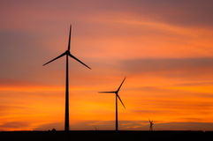 Wind turbines during sunset. Silhouettes of wind turbines in Tulcea county (Dobrogea, Romania). Lots of wind turbines have been installed lately because the area Royalty Free Stock Image