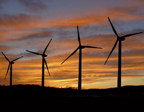 Wind turbines at sunset. Wind turbines back lighted by setting sun Stock Photos