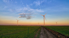 Wind turbines at sunset on green field Royalty Free Stock Image