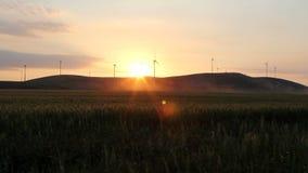 Wind Turbines at sunset stock video