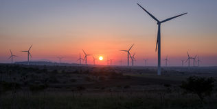 Wind turbines at sunset - Renewable energy concept Royalty Free Stock Photos