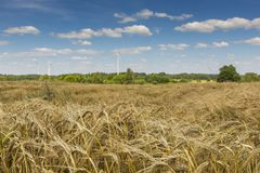 Wind turbines in Suwalki Landscape Park, Poland. Stock Photos