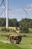 Wind turbines in Suwalki. Poland Stock Photos
