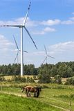 Wind turbines in Suwalki. Poland Royalty Free Stock Photography