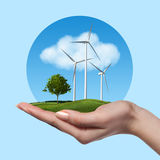 Wind turbines with tree in female hand Stock Images