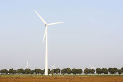Wind turbines and tree lined road in the netherlands Royalty Free Stock Photo