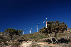 Wind turbines and two pines Stock Photos