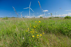 Wind turbines under blue sky Royalty Free Stock Photography