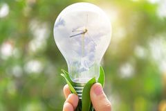 Wind turbines used to generate electricity in the bulb, By the h. And holding it. Renewable energy is a necessity of the future world, Future Energy stock photos