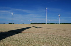 Wind turbines in a wheat field Royalty Free Stock Photo