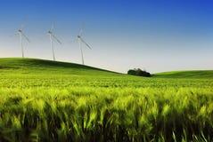 Wind turbines. On the wheat field Royalty Free Stock Photos