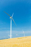 Wind turbines in a wheat field. Over a deep blue sky. Renewable energy ecological concept Stock Photography
