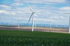 Wind turbines and wheat fields in Eastern Oregon Stock Image