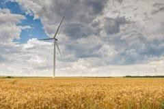 Wind turbines in wheat fields Royalty Free Stock Image