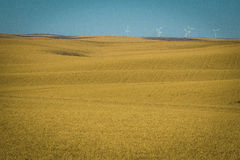 Wind Turbines, Wheat Fields, Washington State Stock Image