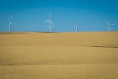 Wind turbines, wheat fields, Washington state royalty free stock image