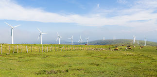 Wind turbines on a wind farm in Galicia, Spain Stock Photo