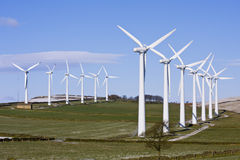 Wind turbines in windfarm. Against blue sky stock image