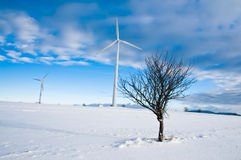 Wind Turbines in Winter Landscape Stock Photography