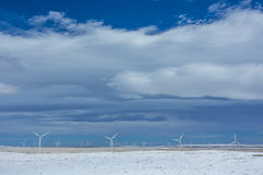 Wind turbines in winter wheatfields Royalty Free Stock Photography