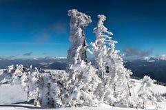Wind u. Schnee Stockfotos