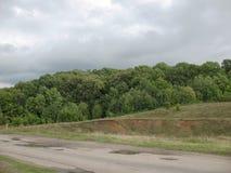 Wind und Wald Lizenzfreie Stockbilder
