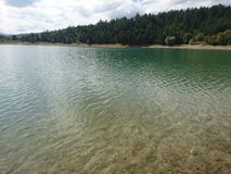 Wind on water. Green, lake, sky, forest stock photography