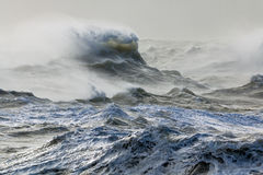 Wind and Wave Royalty Free Stock Image