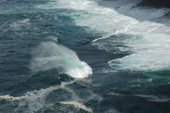 Wind and waves. A gentle atlantic swell coming into the cliffs of northern Scotland the wind whipping the spray off the top of the wave Royalty Free Stock Images