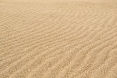 Wind waves in the sand on the beach. The sand on a pristine beach, shaped by the sea breeze, softly illuminated a cloudy day. Delta of the river Llobregat Stock Photography