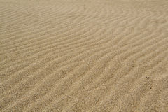 Wind waves in the sand on the beach. The sand on a pristine beach, shaped by the sea breeze, softly illuminated a cloudy day. Delta of the river Llobregat Royalty Free Stock Image