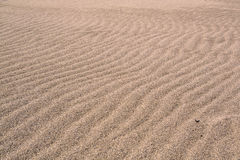 Wind waves in the sand on the beach. The sand on a pristine beach, shaped by the sea breeze, softly illuminated a cloudy day. Delta of the river Llobregat Stock Photo