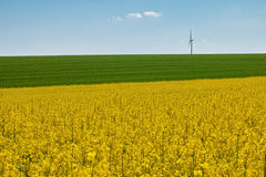 Wind wheels raps. Wind wheels in saxony with raps Royalty Free Stock Image