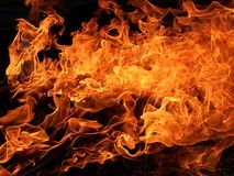 Wind whipped flames. A fire burning up close Royalty Free Stock Images