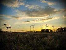 Wind Stock Image