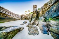 Windansea morza falezy Fotografia Stock