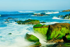 Windansea strand i La Jolla Arkivfoton