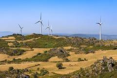 Windarbeitsturbinebauernhof auf einer grünen Landschaft Stockfotografie
