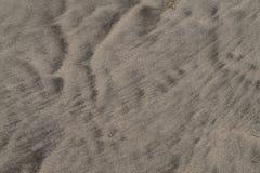 Windblown картина песка пляжа Стоковые Фотографии RF