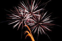 Windblown Fireworks Royalty Free Stock Photography
