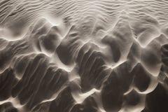 Windblown sand arkivfoto
