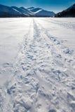 Windblown snowmobile tracks. Ski-doo track on windblown snowy surface of frozen mountain lake in winter wonderland Stock Photos
