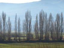 Windbreakers Imagen de archivo