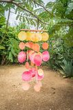 Windchimes -  Curacao Views Stock Image