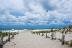 Winde entlang dem Strand Stockfotos