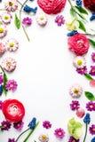 Winden Sie Rahmen mit Rosen, Muscari, Kamille, Ranunculus, Niederlassungen, Blätter Lizenzfreies Stockbild