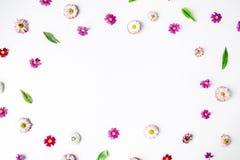 Winden Sie Rahmenherz mit Rosen, Kamillenknospen Lizenzfreie Stockfotos